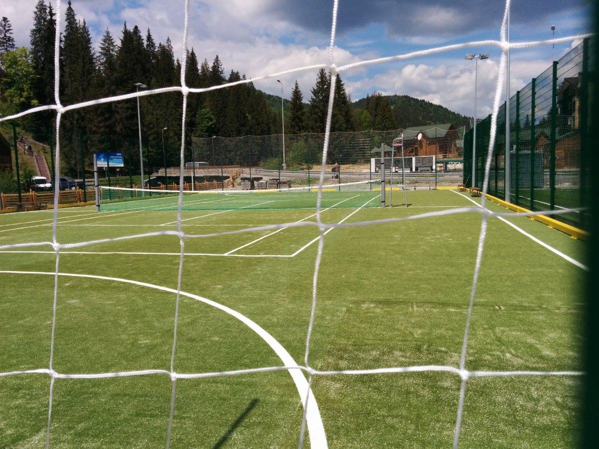 Die AFD und Fußball